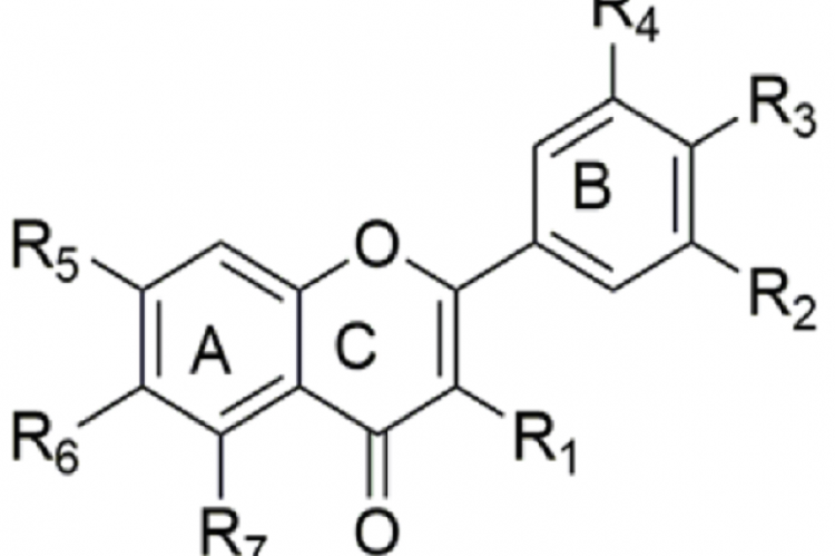 Figure 2: Chemical structure of quercetin and its main derivatives