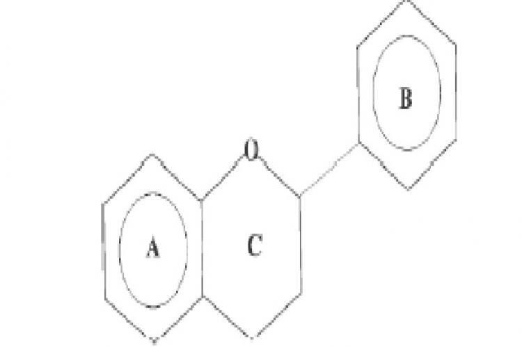 Basic flavonoid structure