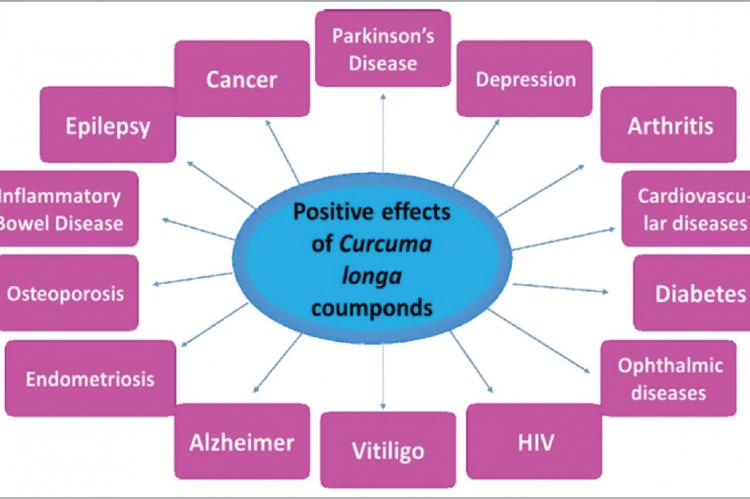 Curcuma longa compounds may positively influence several pathologies