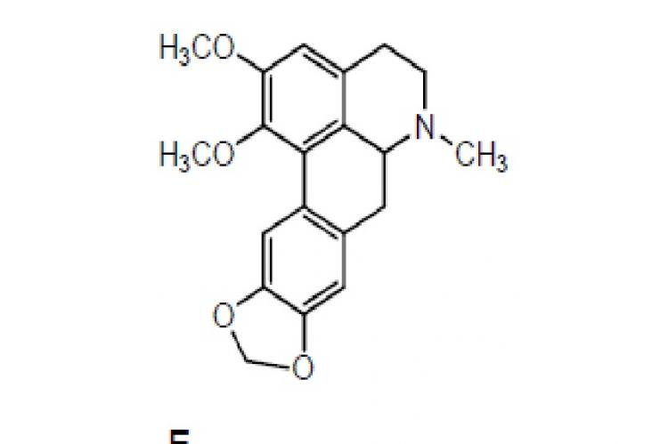 Structures of alkaloids and flavonoids with anticonvulsant activities