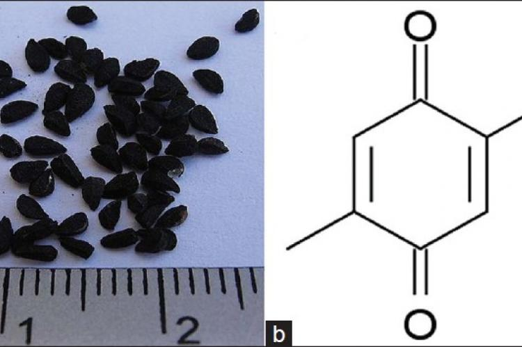 (a) Nigella sativa seeds (black seeds).
