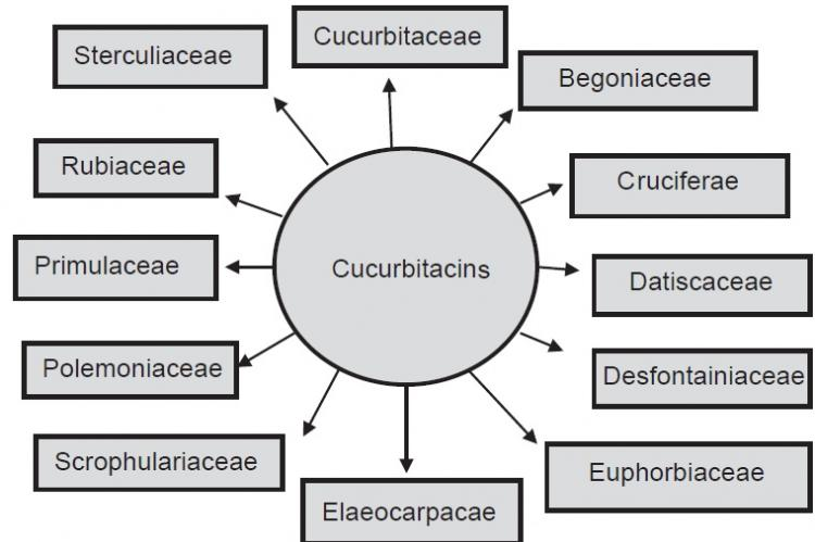 Occurrence of Cucurbitacins in various plant families
