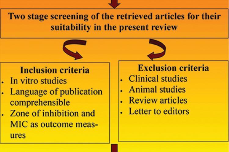 Diagrammatic representation of the research protocol