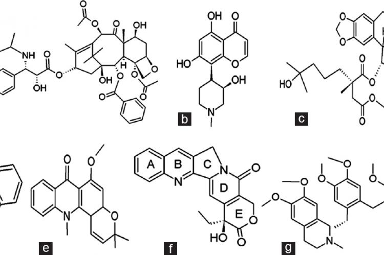 Chemical structures of some anticancer alkaloids isolated from trees