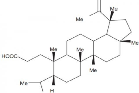 3, 4‑Seco‑lup‑20 (29)‑en‑3‑oic acid