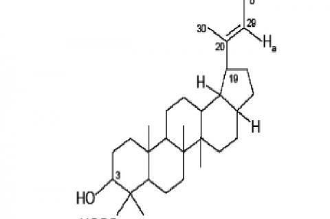 3a-hydroxy-lup-20(29)-en-24 oic acid