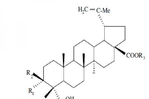 The available literature on phytochemical reports of the