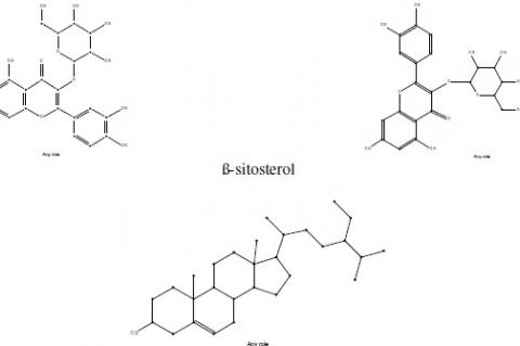 ß-sitosterol