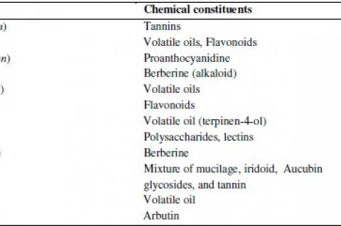 Active chemical constituents of some urologic herbs having antiinfectant activity against urinary tract infections