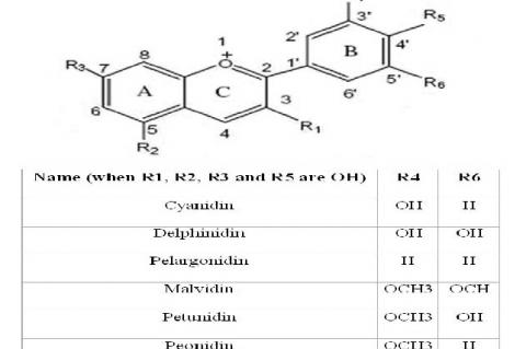 Structural identification of anthocyanidins (aglycons)