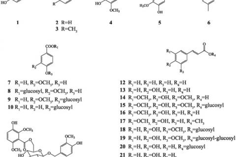 The structures of phenolics