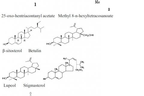 Major phytochemical constituents of H. spinosa