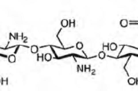 The chemical structure of chitosan