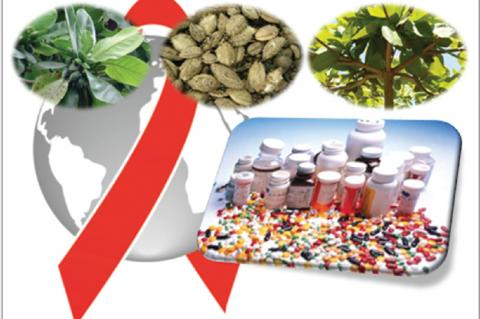 Herbal medicine versus synthetics drugs for antiretroviral therapy