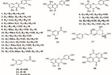 Polyphenols detected in Moquilea species